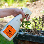 pesticide-plantes-spray-arroser-toxique3